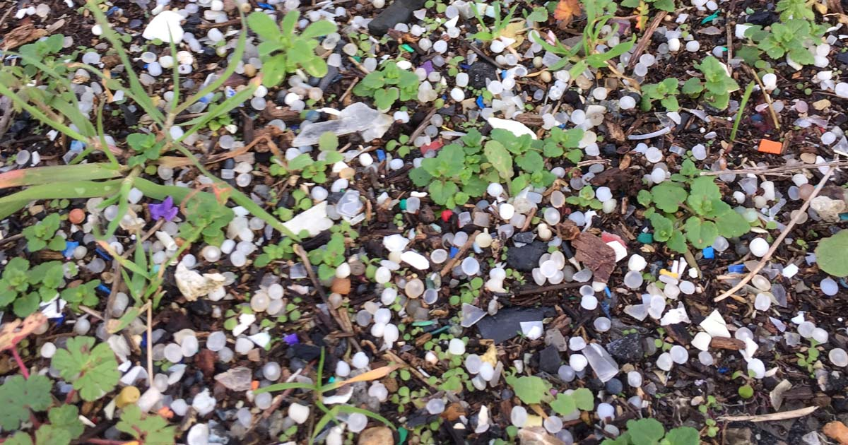 Microplastics-Holes-Bay