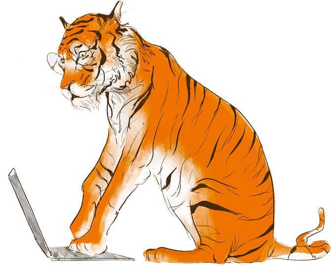 AimHi Tiger